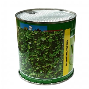 \\server2bit\catalog\product\0\1\01.0476_dichondra_repens.jpg