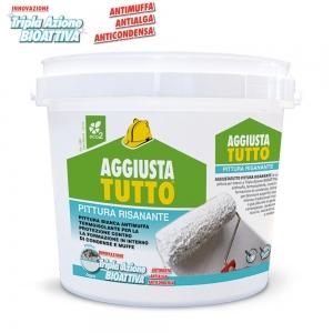 AGGIUSTATUTTO PITTURA RISANANTE LT4